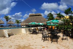 Bonaire november - The dive hut bonaire ...
