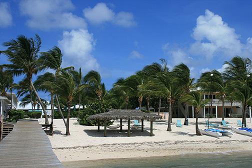 little cayman south shore: